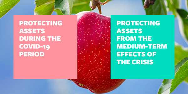 Protecting assets: